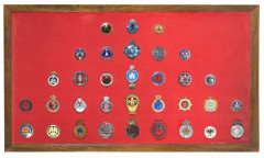 Collection de 33 badges automobiles