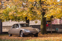 1974 Citroën DS 23 IE Pallas  No reserve