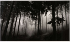Robert LONGO (né en 1953) Fairmount Forest - 2014