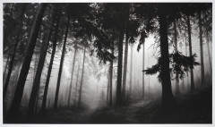 Robert LONGO (Né en 1953) Untitled (Fairmount Forest) - 2014 Impression pigmentaire