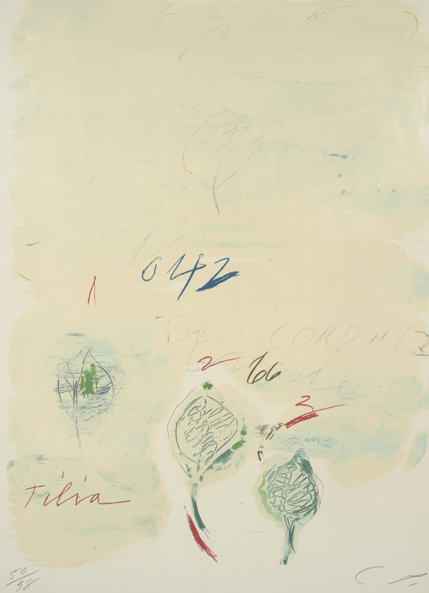 Cy TWOMBLY 1928-2011 Tilia Cordata (issue de Natural History, Part II: Some Trees of Italy) - 1975