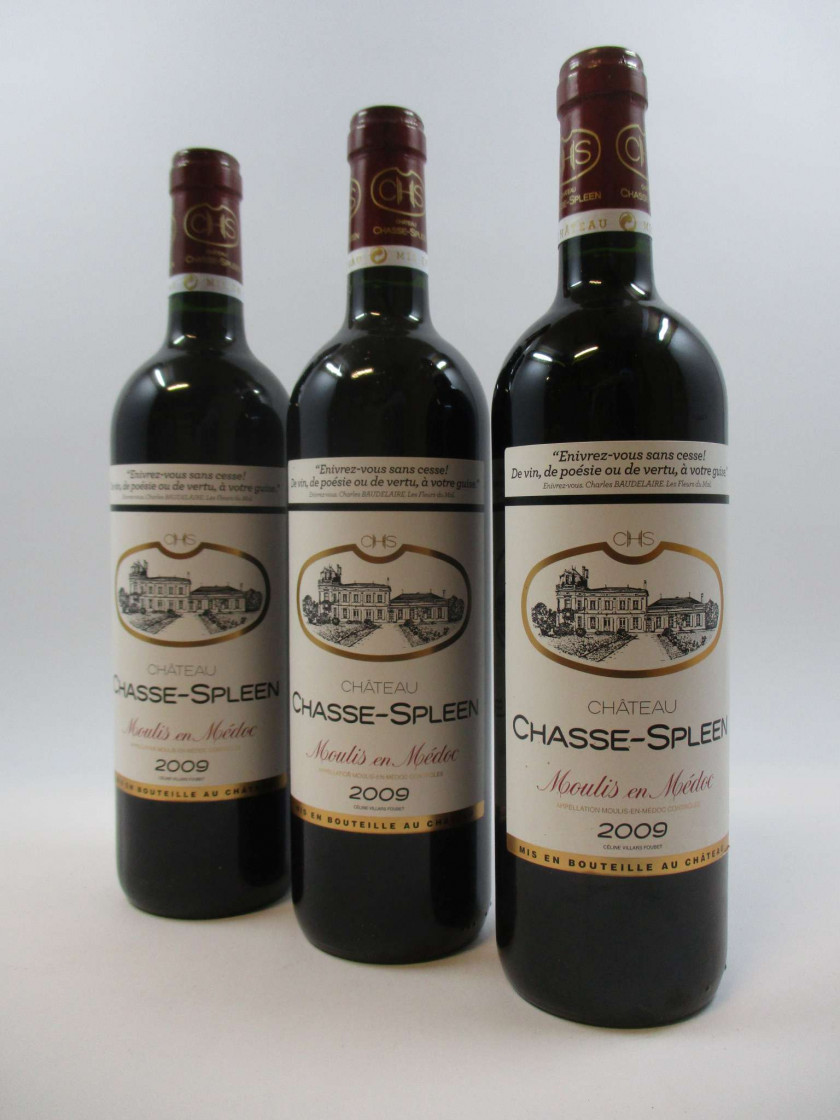 6 bouteilles CHÂTEAU CHASSE SPLEEN 2009 Moulis